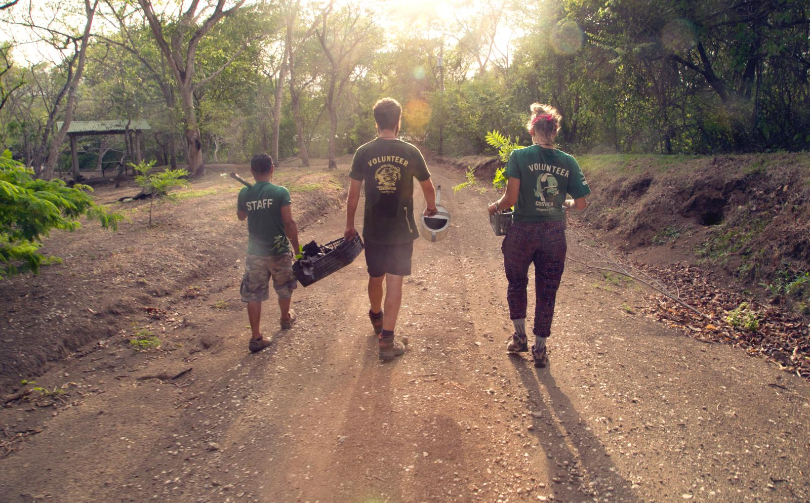 Conservation volunteers working together abroad